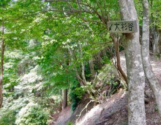 下りは大杉谷コース
